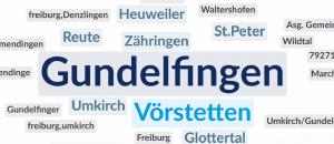 Virtueller Jugendpolitiktag Gundelfingen